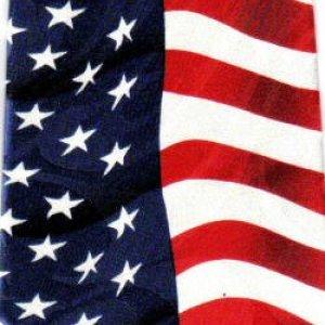 画像1: ネクタイ 星条旗 アメリカ国旗  <B>