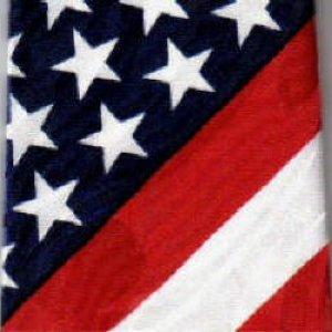 画像1: ネクタイ 星条旗 アメリカ国旗  <A>